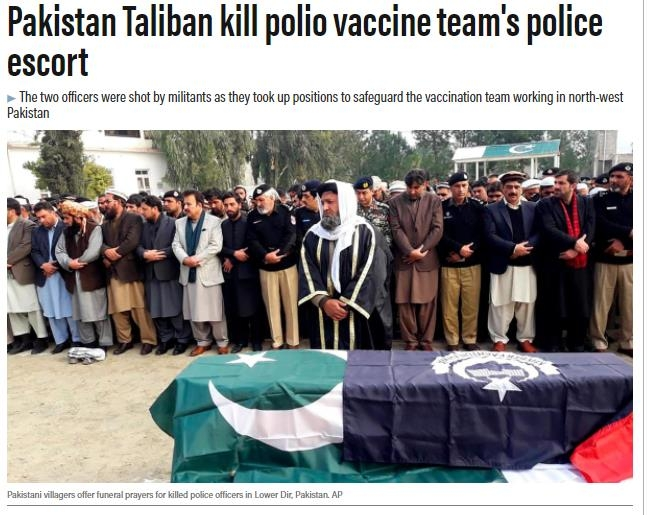 Halal status 1.jpg_1